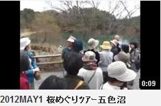 2012MAY1 桜めぐりツアー五色沼