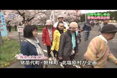 磐梯山周辺桜めぐりツアー